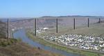 mosel-bridge-thumb-150x81-675.jpg
