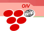 oiv_1-thumb-150x105-1912.jpg
