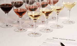 studying-wine