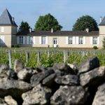 Thematic tastings at Château Climens, starting September