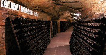 Cava Cava – Cordorníu winery, the world's oldest producer of bottle-fermented sparkling wine