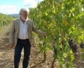 A Man of Vision in Montalcino – Count Francesco Marone Cinzano