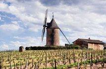 Moulin-a-Vent, Burgundy